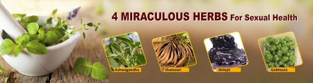 4 MIRACULOUS HERBS For Sexual Health